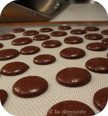 mchocolat